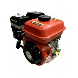 Motor Gasolina 208cc 7 cv 4...
